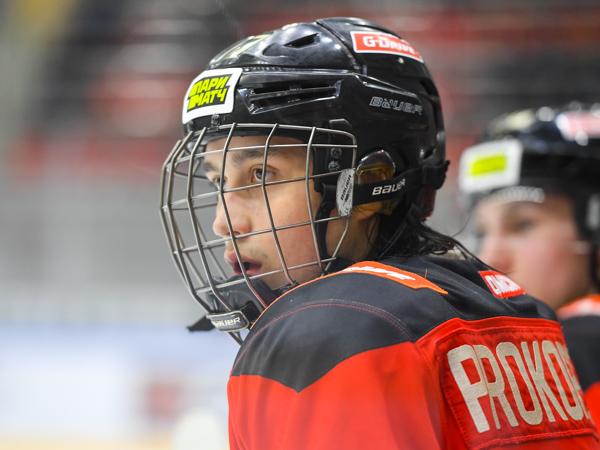 https://img.allhockey.ru/files/articles8/dsc_1128.jpg